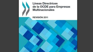 lineas directrices